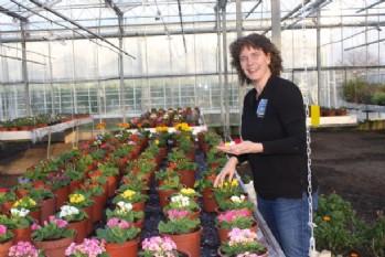 Eetbare Bloemen Shop